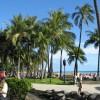 ハワイ最終日 さよならオアフ島